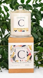 Candle Glass XL Morning Mist- Wild Pear 350g